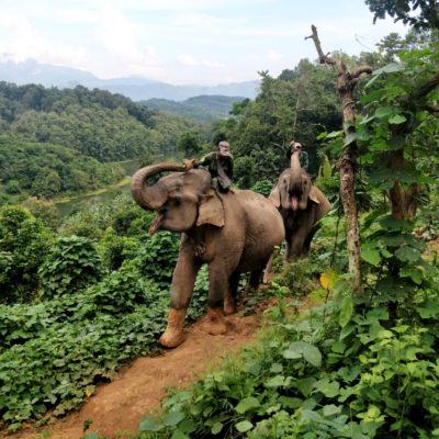 Tymy na szlaku: odc.2 – Laos i Wietnam