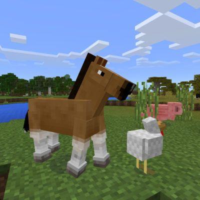 Magia Programowania w Minecraft (poziom podstawowy)